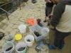 thumbs photo 2015 02 18 13 03 17 Extracción de fauna en el Llac del Parc de la Ciutadella