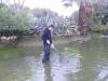 thumbs photo 2015 02 18 13 03 35 Extracción de fauna en el Llac del Parc de la Ciutadella