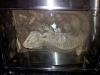thumbs img 20120713 181853 Galería fotográfica del I Seminario Práctico de Veterinaria de Reptiles