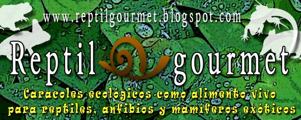 banner expoterraria Descuento para los socios en Reptil Gourmet