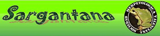 sargantana2 Colabora con el boletín Sargantana