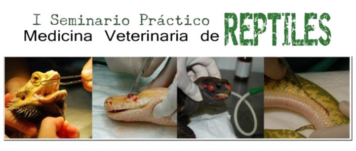 destacada_vet