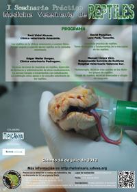 sem vet 12 miniatura I Seminario práctico Medicina Veterinaria de Reptiles