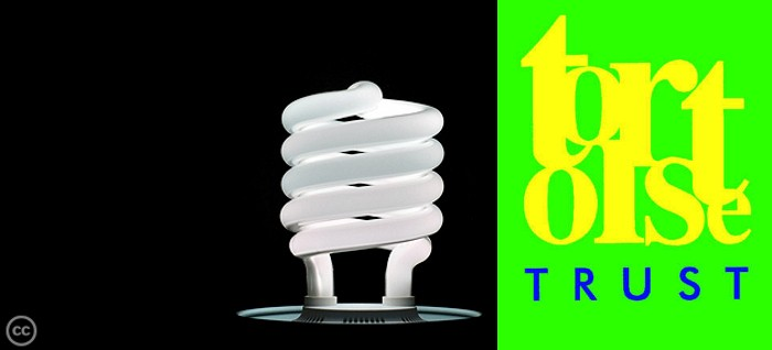 tck-energy-efficient-light-blub-feature-Michael-W-May