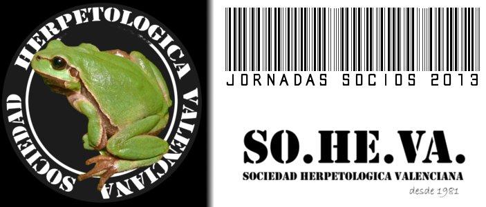 destacada_jsocios