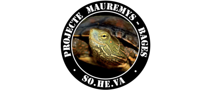 mauremys bages