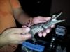thumbs img 20120713 182058 Galería fotográfica del I Seminario Práctico de Veterinaria de Reptiles